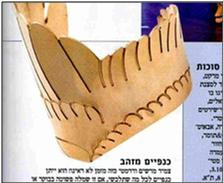 inbar-shapira-9